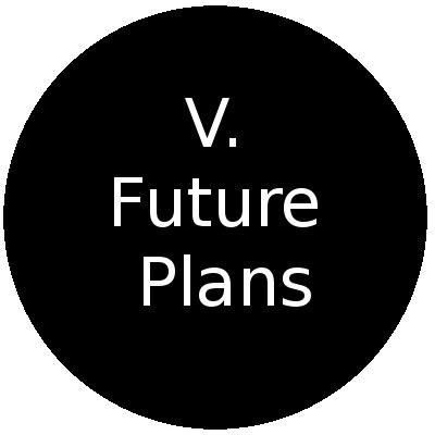 Future plan essay conclusions
